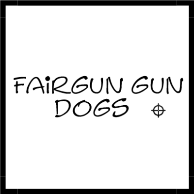 https://blackbeardhosting.com/wp-content/uploads/2019/08/DL-Fairgun-Gun-Dogs-Client-Logo.png