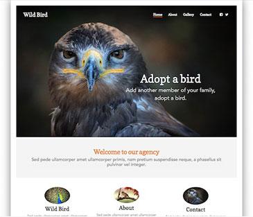 website-builder-theme-4